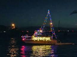 Christmas In Hawaii  A Beautiful Sight To See  Perfect Days HawaiiChristmas Tree Hawaii