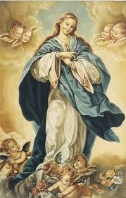 """Esteban Bullrich в Twitter: """"Feliz Día de la Inmaculada Concepción de la  Virgen María! Hoy armemos el arbolito!!… """""""