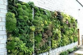 vertical garden kit uk wall green everywhere gardens inspiring indoor vert vertical garden kit