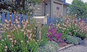 Small Picture Drought Tolerant Inspiring Garden Ideas for all gardeners