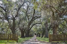 Louisiana Sehenswürdigkeiten - Meine schönsten Highlights & besten Tipps