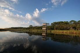 How To Paddle Floridas Big Bend Visit Florida