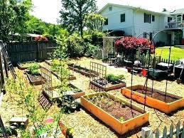 backyard garden ideas pictures of backyard vegetable gardens backyard vegetable garden ideas backyard gardens ideas how backyard garden ideas