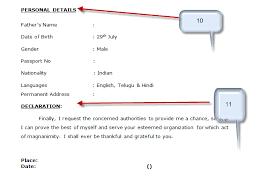declaration format for resume resume ideas