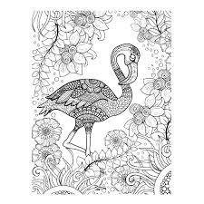 Flamingo Kleurplaten Voor Volwassenen