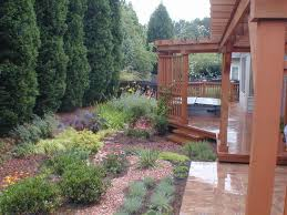 Small Picture Drainage solution Raingarden Traditional Landscape Atlanta