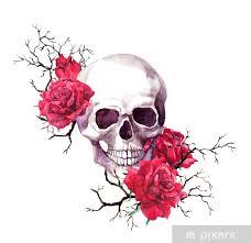 Fototapeta Vinylová Lidská Lebka V Větvích červené Růže Květiny Akvarel Pro Halloween