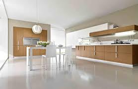 Modern Wooden Kitchen Cabinets Natural Wood Kitchen Cabinets Modern Kitchen Cabinets With