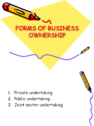 forms of ownership download forms of ownership docshare tips
