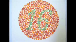 Eye Test Colour Chart Ishiharas Test For Colour Deficiency 24 Plates Edition
