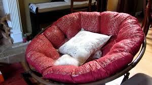 image of outdoor papasan cushions on