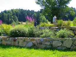 Eolas Garten Professionelle Baumpflege Und Gartenservice