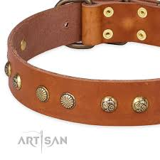 quick to fasten leather dog collar with almost unbreakable non rusting hardware