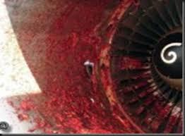 airplane mechanic sucked jet engine 02 turbine engine mechanic