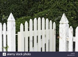white picket fence. Colonial Garden With White Picket Fence And Gate, Williamsburg, Virginia, USA