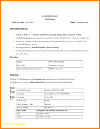 New Microsoft Office Resume Template Best Templates