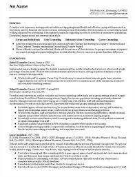 this sample career counselor resume is a variation of the combination style vocational counselor resume