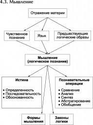 МЫШЛЕНИЕ СЛОВЕСНО ЛОГИЧЕСКОЕ это что такое МЫШЛЕНИЕ СЛОВЕСНО  Мышление логическое познание