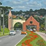 imagem de Manoel Ribas Paraná n-9