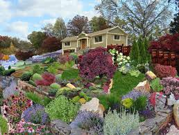 Small Picture Rock Garden Designs Front Yard Home Design Ideas