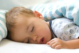 does your body shut down for sleep wonderopolis does your body shut down for sleep
