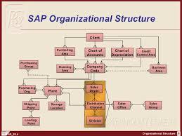 Sap Sd Organizational Structure Flow Chart Sap Fi Organization Structure Http Sapdocs Info