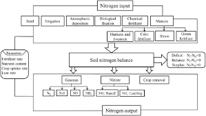 Flowchart Of Nitrogen Cycle And Balance In Chinas Croplands