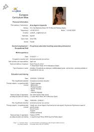 Example Cv In English Language Cover Letter Samples Cover Letter