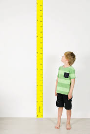 Wall Ruler Height Chart Yellow R