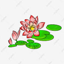 Lilybud Gardens By Design Lotus Water Lily Bud Red Hand Painted Lotus Hand Painted