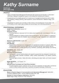 breakupus ravishing best job resume curriculum resume vitae cv breakupus ravishing best job resume curriculum resume vitae cv examples resume gorgeous format for job resume format for job resume best resume s