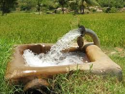 Image result for عکس کارشناسان کشاورزی در حال ترویج