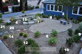 Small Picture Plant placement in native drought tolerant front yard