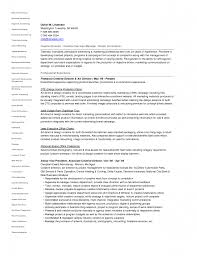 Creative Director Resume Sample Free Resume Example And Writing