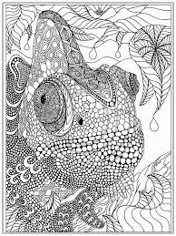 Small Picture 100 best Elephant Adult Coloring Pages images on Pinterest