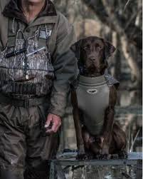 Hunting Dog Supplies Camo Dog Vest