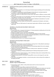 Training Development Specialist Resume Samples Velvet Jobs