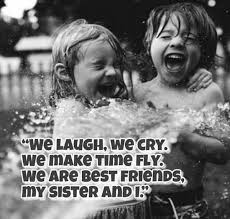 I Love You Sister Quotes Interesting Sibling Quotes 48 Best Brother And Sister Quotes Ideas