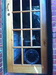 pet doors pet door installation dog