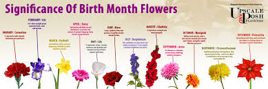 Month Flowers Chart Birth Month Flowers Chart Google Search Birth Month