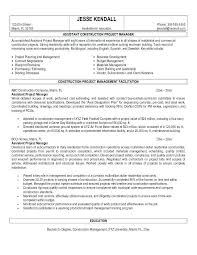 Project Management Resume Samples Awesome Product Owner Resume