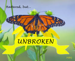 Monarch Butterfly Picture W Inspirational Quote