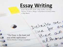 essay writing excerpts taken from gloria mueller college  1 essay
