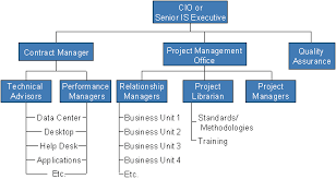 Gartner Org Chart Her Likes This Project Management Office Organizational