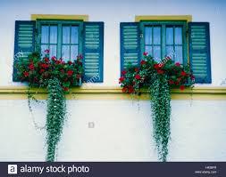 Residenz Fassade Detail Windows Blumenschmuck Gebäude Haus