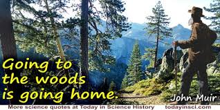 Woods Quotes 40 Quotes On Woods Science Quotes Dictionary Of Awesome Woods Quotes