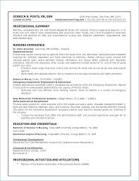 Resume Professional Skills Awesome Skills Examples For Resume From Skills To Have A Resume Beautiful