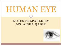 Structure of #Human_eye👀 #Front_view👁... - Learning and interaction With  Ms Aisha Qadir | Facebook