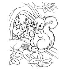 Leuk Voor Kids Eekhoorns Kleurplaten