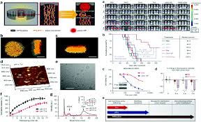 Self-assembled nanomaterials for synergistic antitumour therapy ...